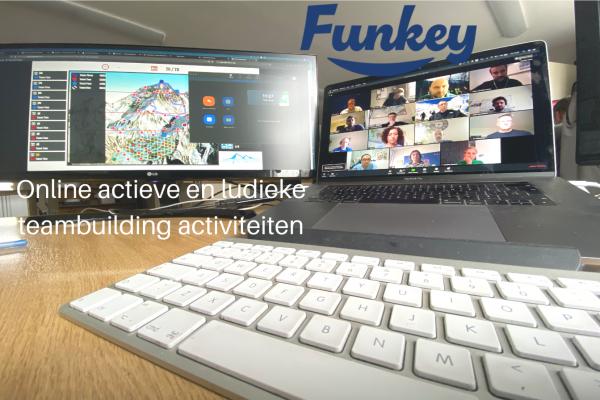 Online actief_ludiek-2
